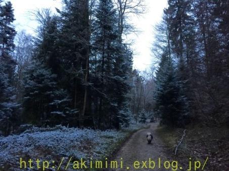 b0245488_06503553.jpg