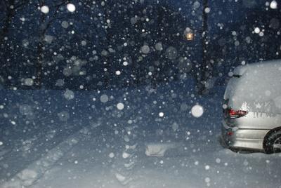 1月17日  月曜  -2  雪_f0210811_7183572.jpg
