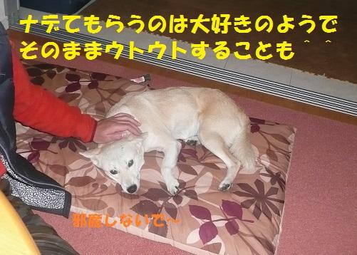 f0121712_040323.jpg