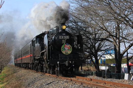 真岡鉄道に乗ってきました。_b0207413_1611587.jpg