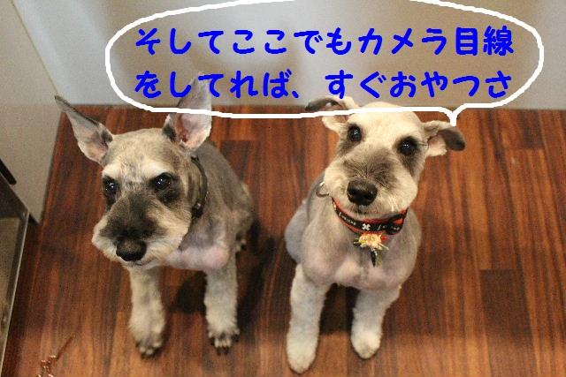 来月からバレンタイン企画はじまりまぁ~す!!_b0130018_8105975.jpg