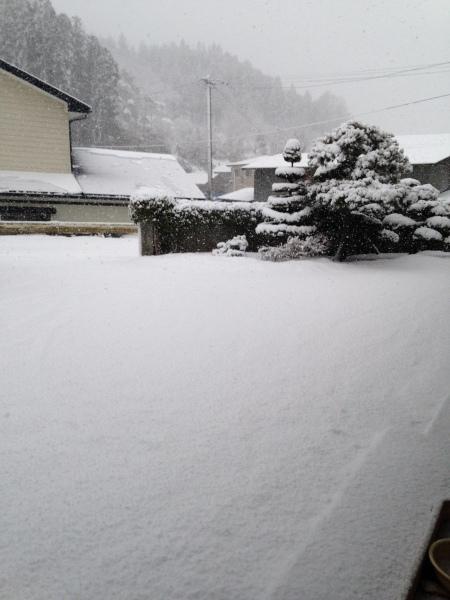 雪かき!雪かき!_d0322040_20313862.jpeg