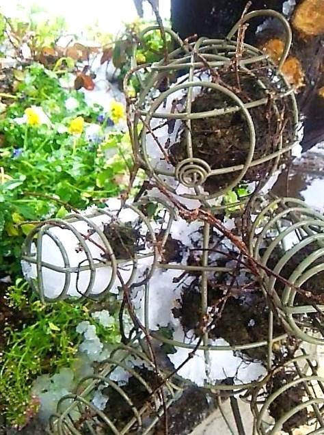 代官山の雪の日と チョロレートなティータイム。。꒰ღ˘◡˘ற✯*☪♥*・。♬♪。:☆.† ♡_a0053662_19192932.jpg