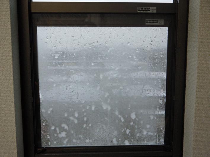 天気予報通り降雪、六国見山は白銀の世界に1・18_c0014967_7491169.jpg