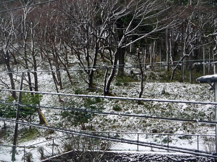 天気予報通り降雪、六国見山は白銀の世界に1・18_c0014967_7503570.jpg