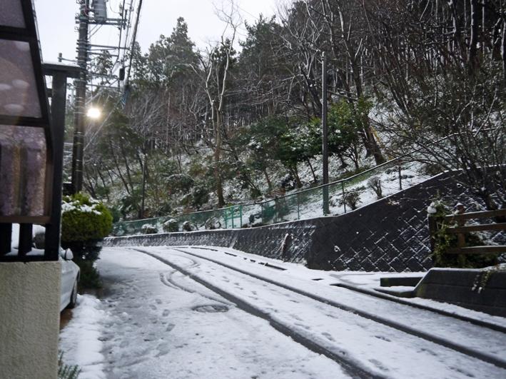 天気予報通り降雪、六国見山は白銀の世界に1・18_c0014967_7505946.jpg