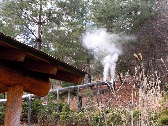 さあ、炭焼きだ!! ~2日目、窯焚きを終えて~_b0102572_223087.jpg