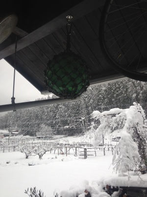 大雪のため休業します_f0296675_09134910.jpg