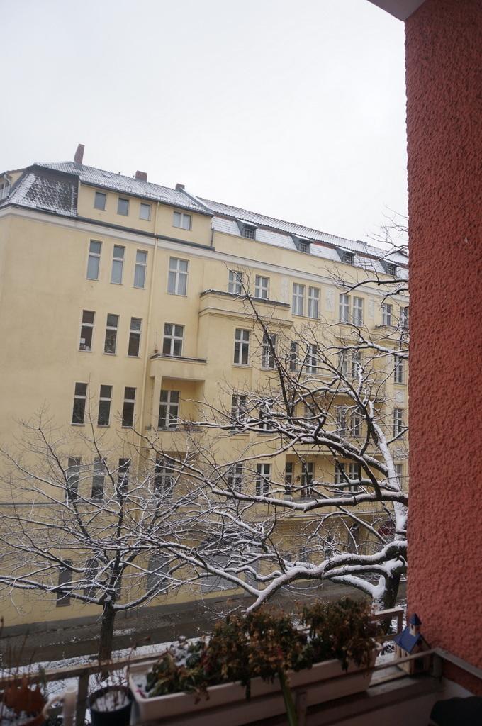夜中の雪。_c0180686_17195570.jpg
