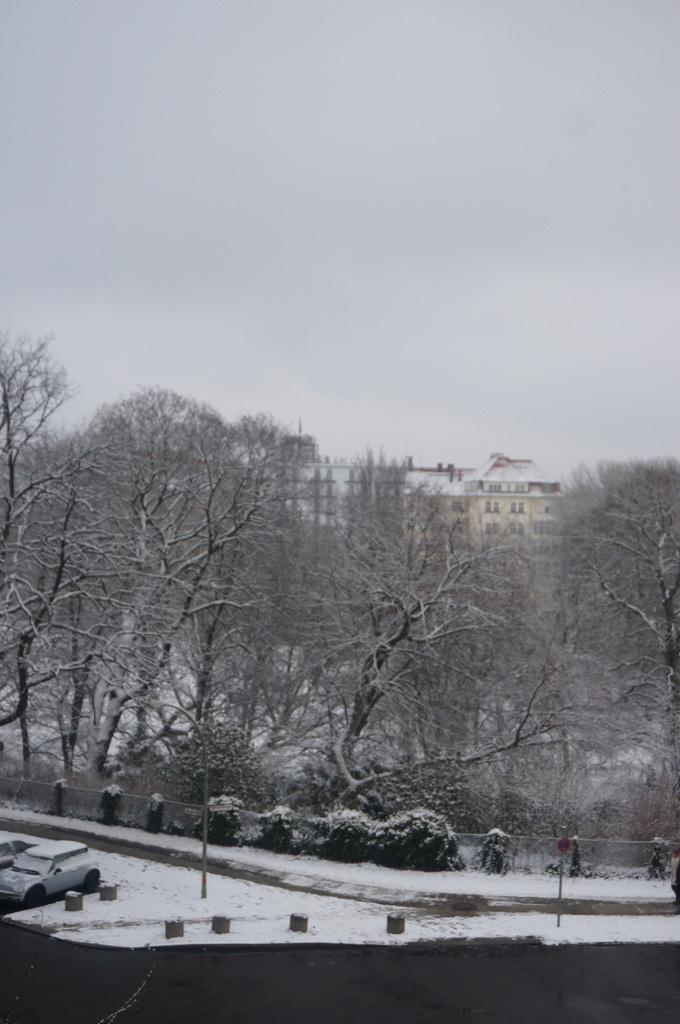 夜中の雪。_c0180686_17200174.jpg
