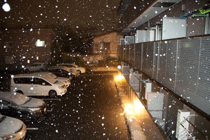 昨夜からの雪が・・・_e0305388_09590981.jpg