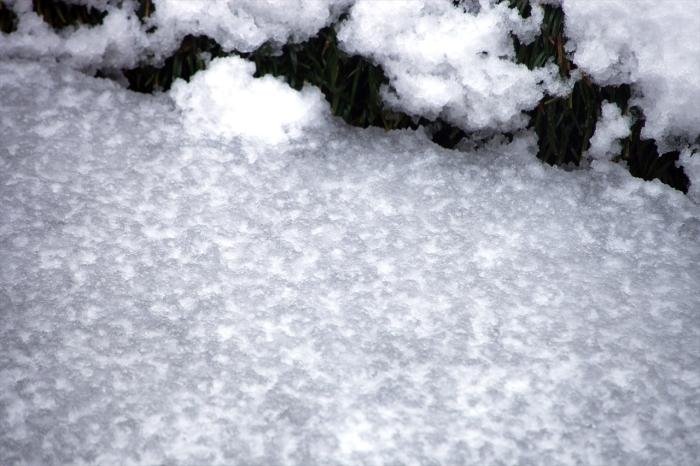 昨夜からの雪が・・・_e0305388_10010152.jpg