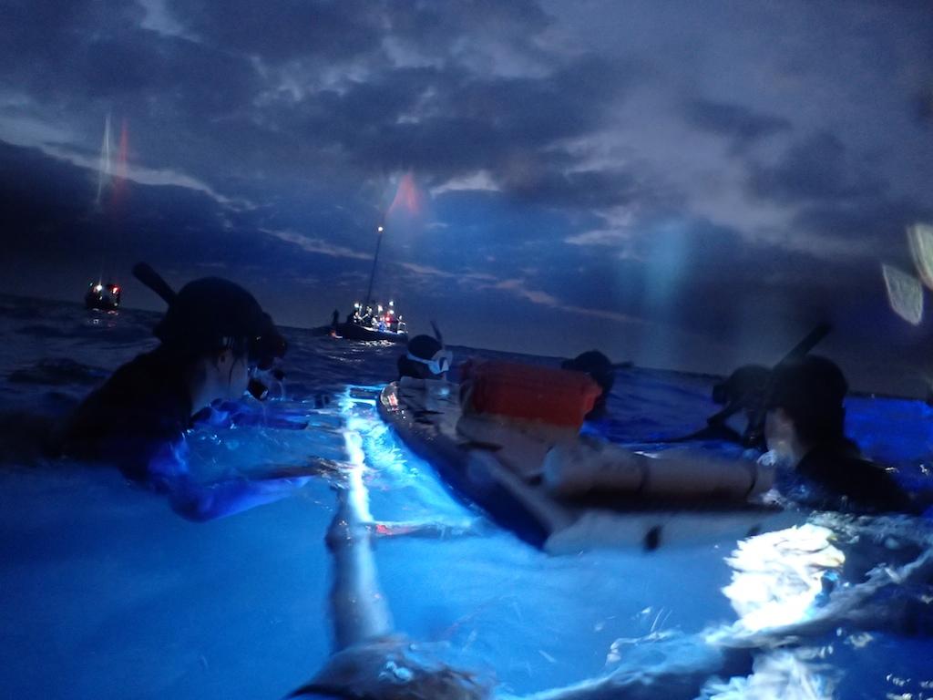 1/8-11 HAWAII ISLAND_a0010095_16152926.jpg