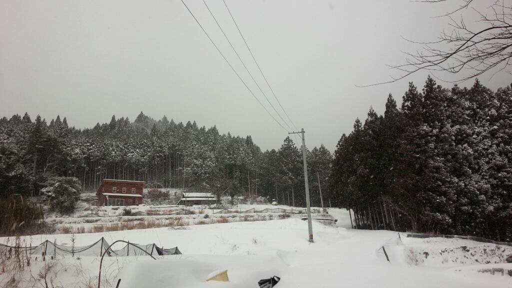 大雪ですね~_e0226604_19252471.jpg