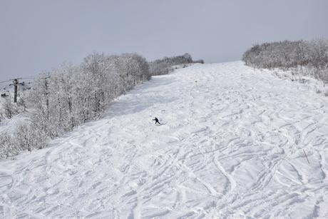 2016年1月白馬八方で滑る_c0242406_1804332.jpg