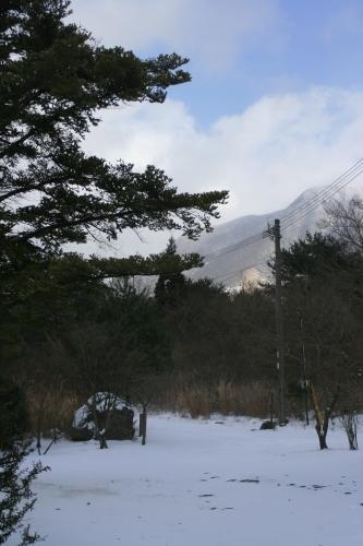 ここも雪です…_e0179508_13101448.jpg