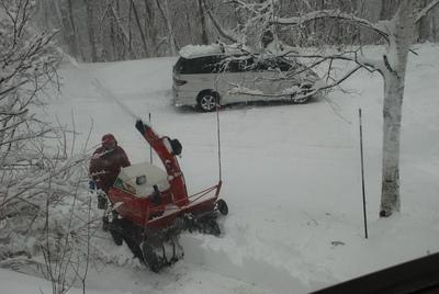 1月17日  月曜  -2  雪_f0210811_12532987.jpg