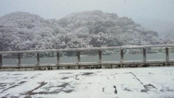 雪景色!_f0006215_16575623.jpg