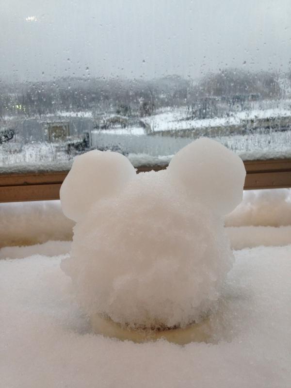 今年の初雪_b0219170_10290743.jpeg