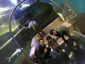 正月早々 須磨水族館&中華街食べ歩き~♪_e0123286_19525572.jpg