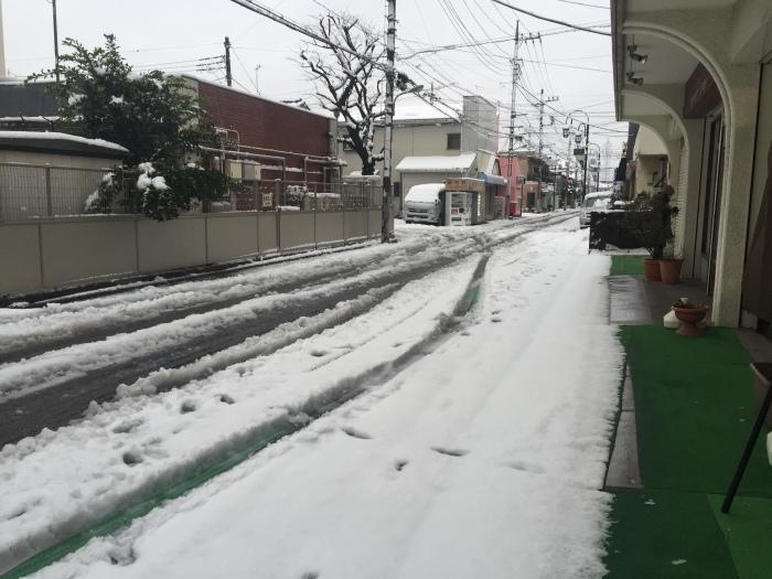 雪の中・・・_e0351292_17292960.jpg