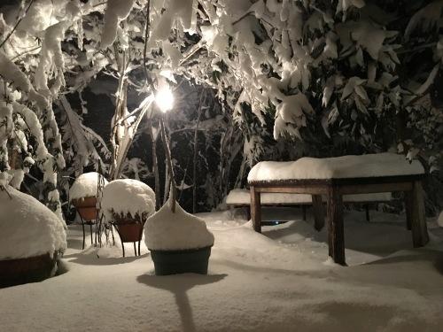 雪は降る。_d0087595_20464768.jpeg