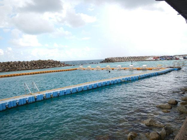 モルディブの首都島マレで泳げる場所とビリンギリ島_a0349326_1813958.jpg