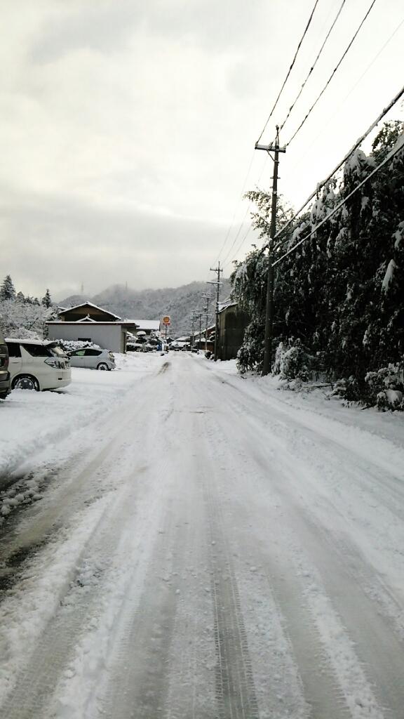 初雪_a0272042_12343055.jpg