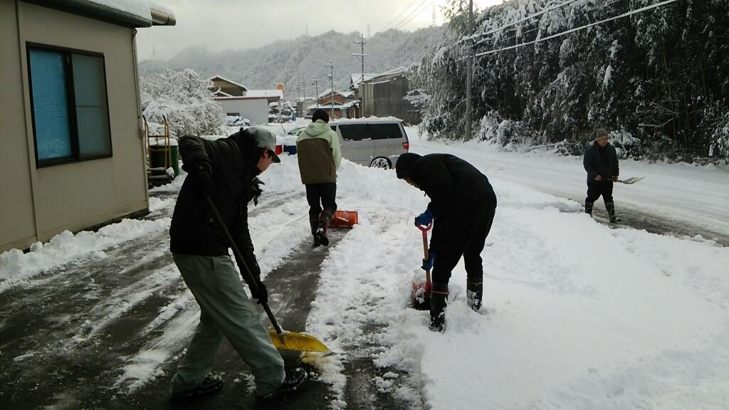 初雪_a0272042_12343813.jpg