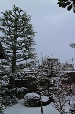 下鴨の初雪_a0279848_13583909.jpg