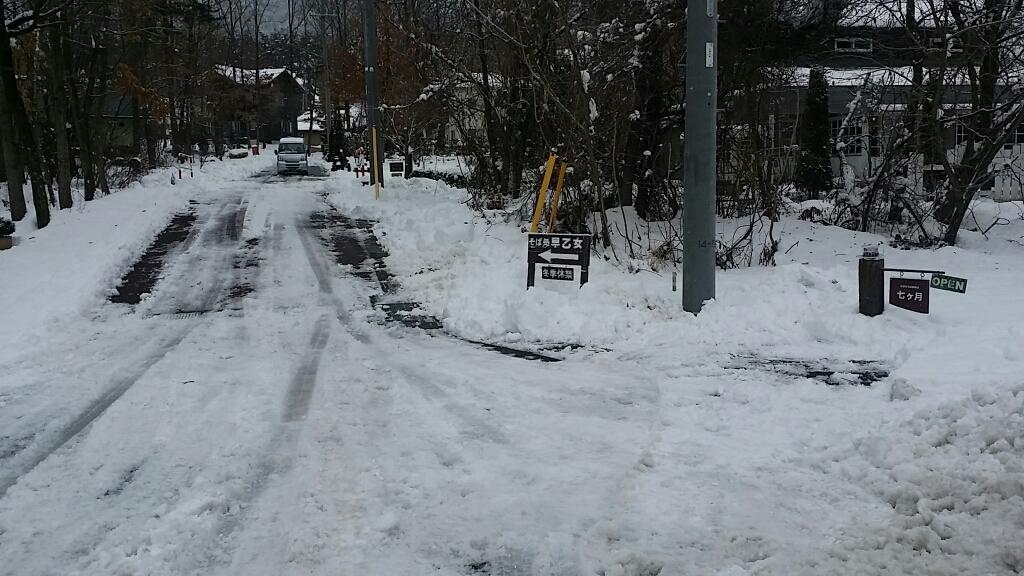 雪降り_d0050155_08440091.jpg