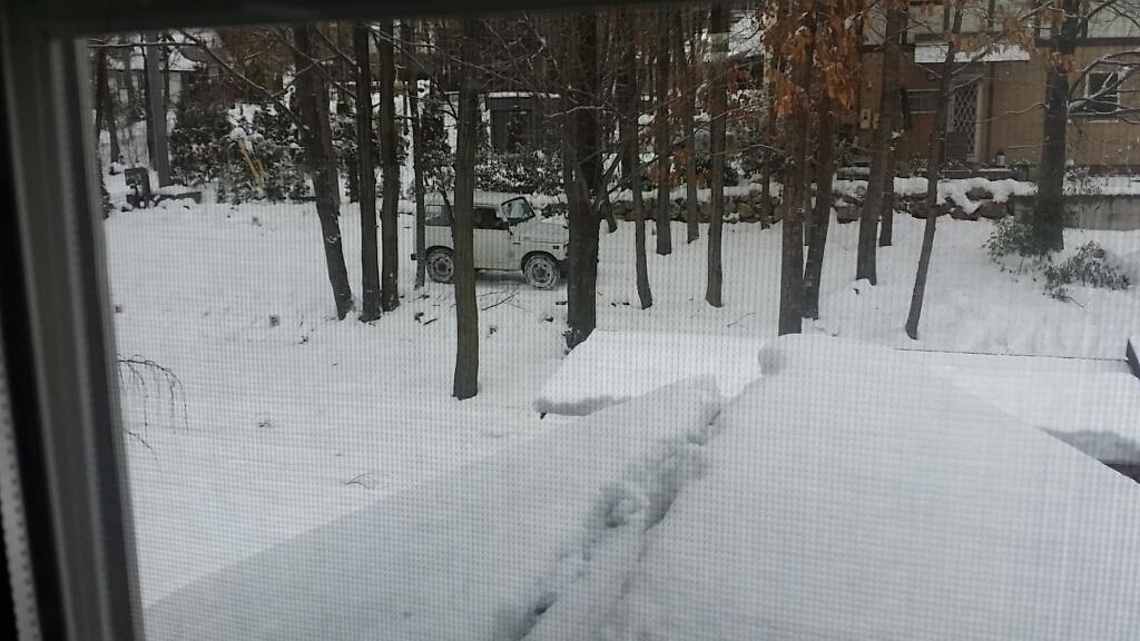 雪降り_d0050155_08440859.jpg