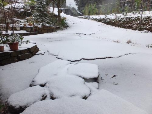 昨日、初積雪_d0336460_08551571.jpg