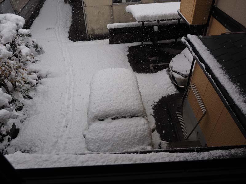 大雪_d0127876_0471285.jpg