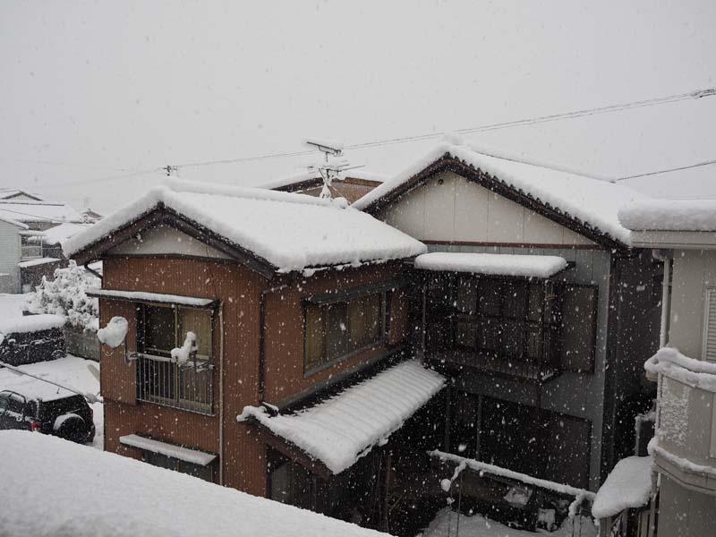 大雪_d0127876_0471954.jpg