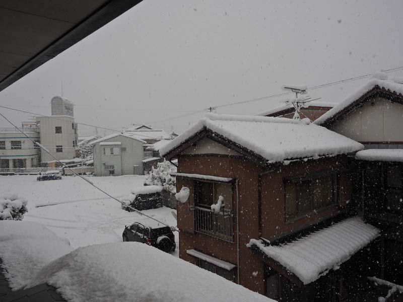 大雪_d0127876_0472383.jpg