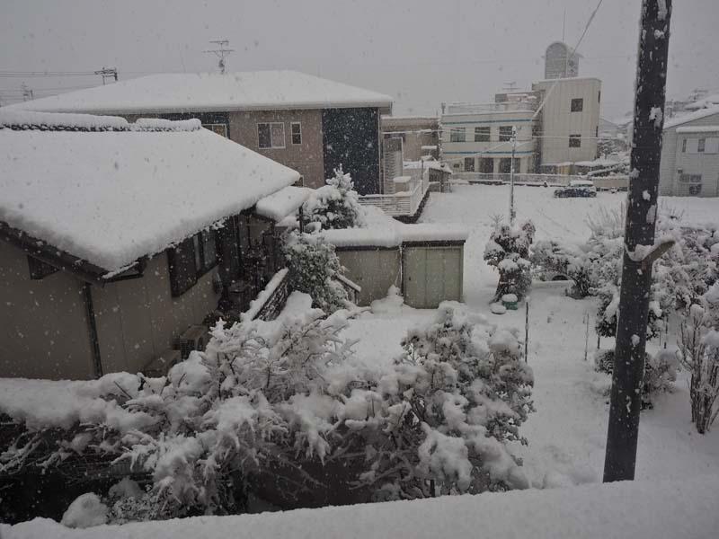 大雪_d0127876_0472592.jpg