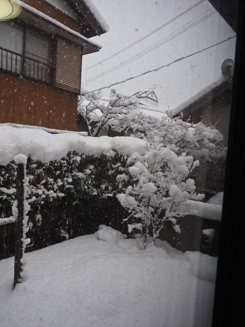 大雪_d0127876_0472828.jpg