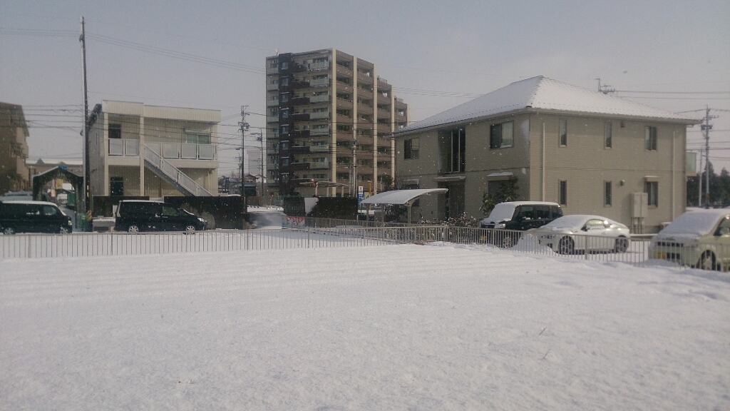 雪_d0172085_15562426.jpg