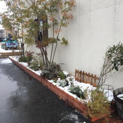 初雪…。_d0178587_10363532.jpeg