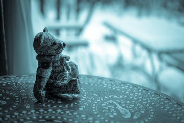 暖冬の雪景色_d0353489_21355849.jpg