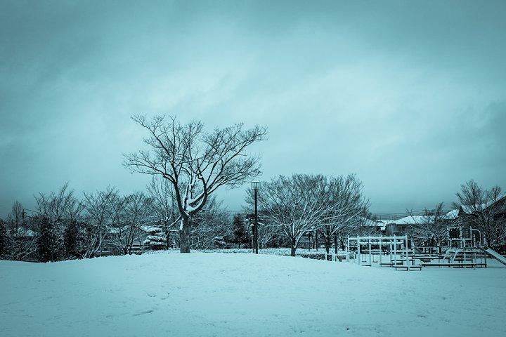 暖冬の雪景色_d0353489_2217170.jpg