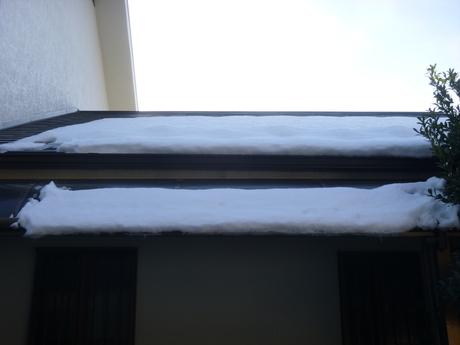 雪が積もった年は、屋根とトイ_e0215910_716218.jpg