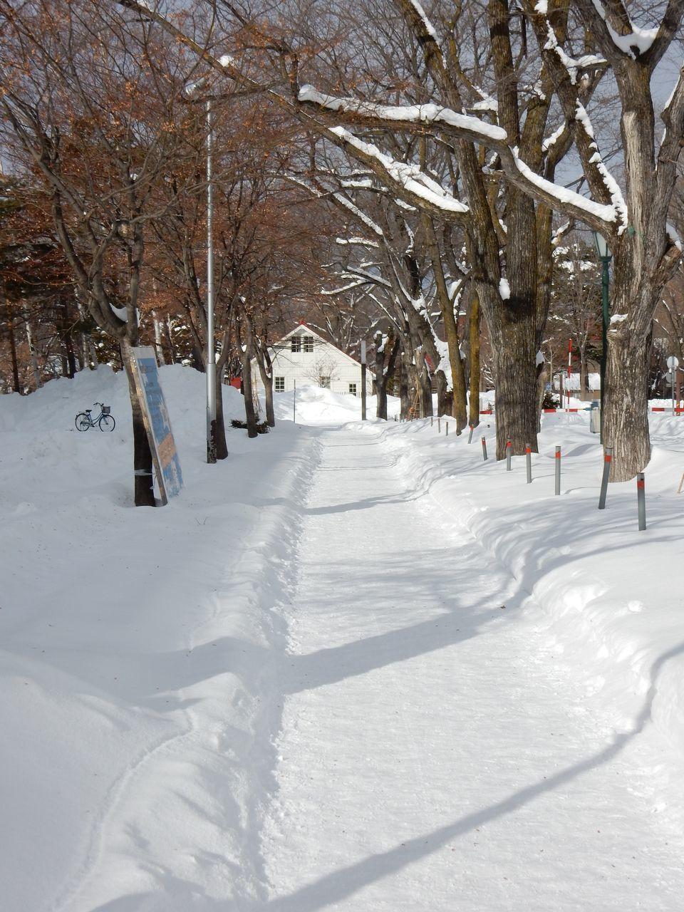 瞬間の冬晴れ_c0025115_18514443.jpg