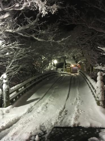 雪のこおろぎ橋 ライトアップ_c0210517_09111561.jpg