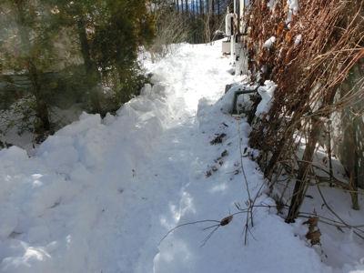 「中雪」3日目_f0019247_1248241.jpg