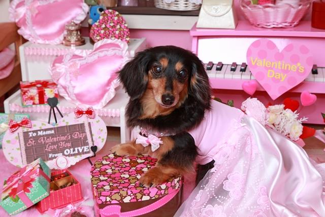 思い出編♪ 2015  St.Valentine day_c0134862_23392478.jpg