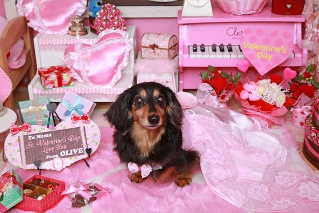 思い出編♪ 2015  St.Valentine day_c0134862_23393662.jpg