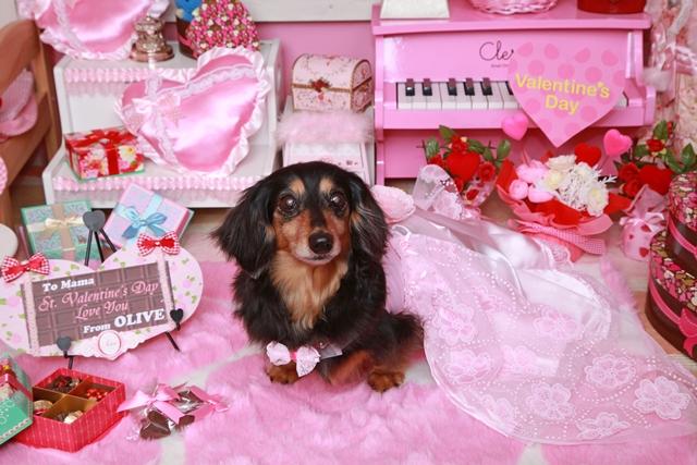 思い出編♪ 2015  St.Valentine day_c0134862_23394163.jpg