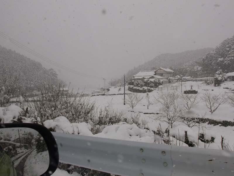 大雪 2_d0127876_2341358.jpg